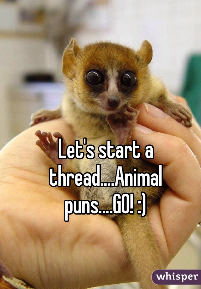 Let's start a thread....Animal puns....GO! :)