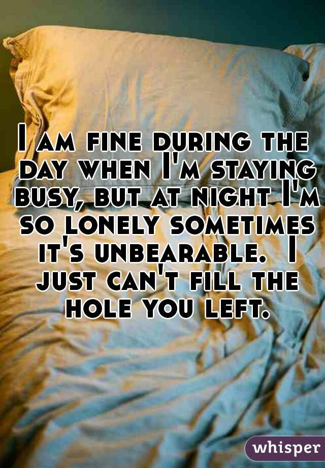 I am fine during the day when I'm staying busy, but at night I'm so lonely sometimes it's unbearable.  I just can't fill the hole you left.
