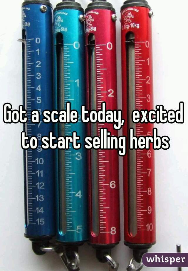 Got a scale today,  excited to start selling herbs