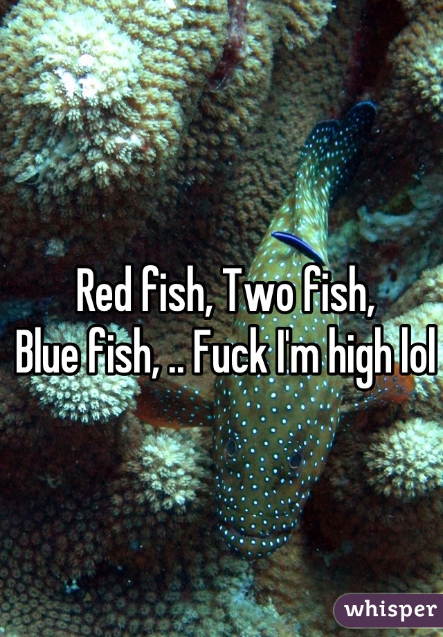 Red fish, Two fish,  Blue fish, .. Fuck I'm high lol