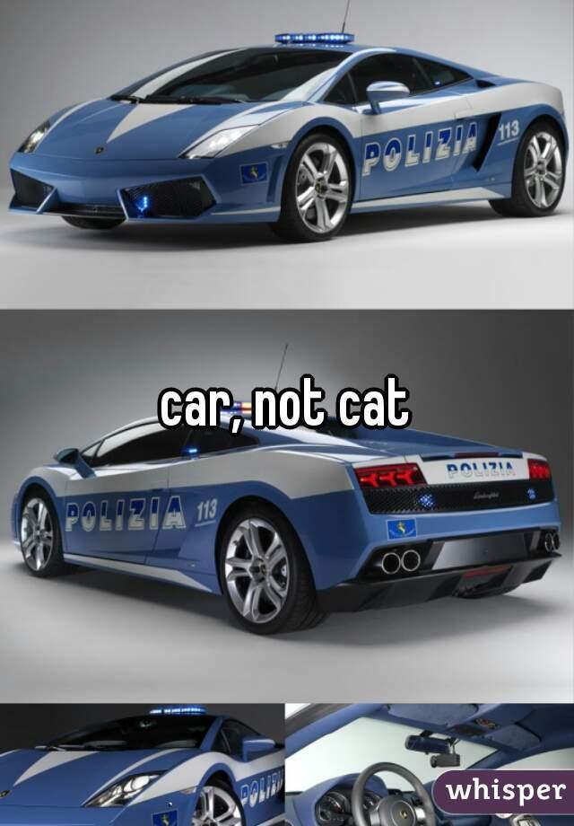 car, not cat