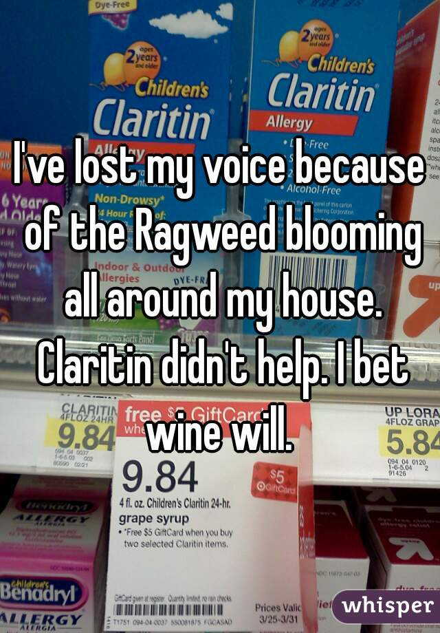 I've lost my voice because of the Ragweed blooming all around my house. Claritin didn't help. I bet wine will.