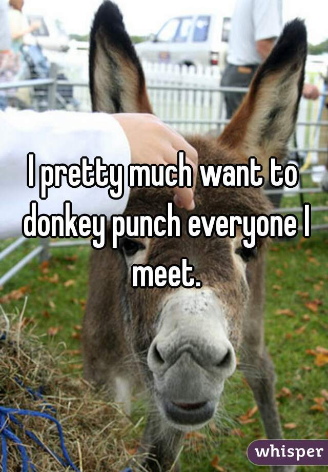 I pretty much want to donkey punch everyone I meet.