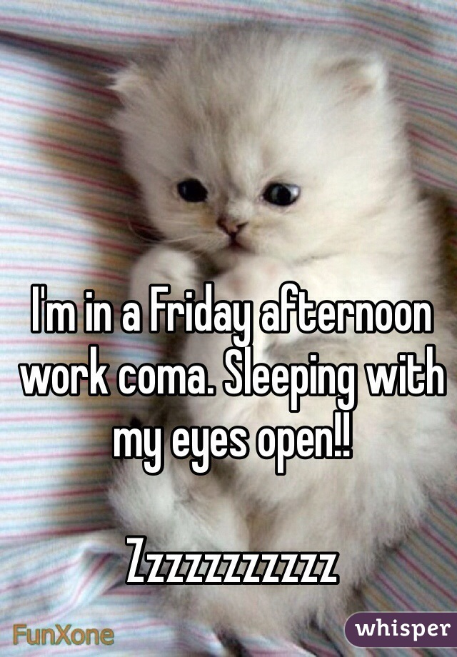 I'm in a Friday afternoon work coma. Sleeping with my eyes open!!  Zzzzzzzzzzz