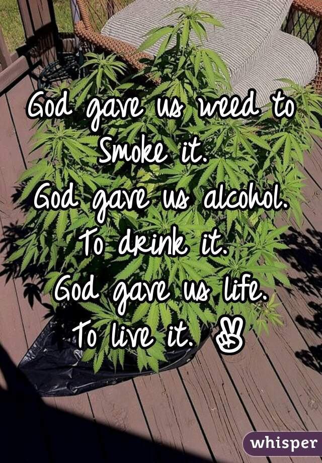 God gave us weed to Smoke it.  God gave us alcohol. To drink it.  God gave us life. To live it. ✌