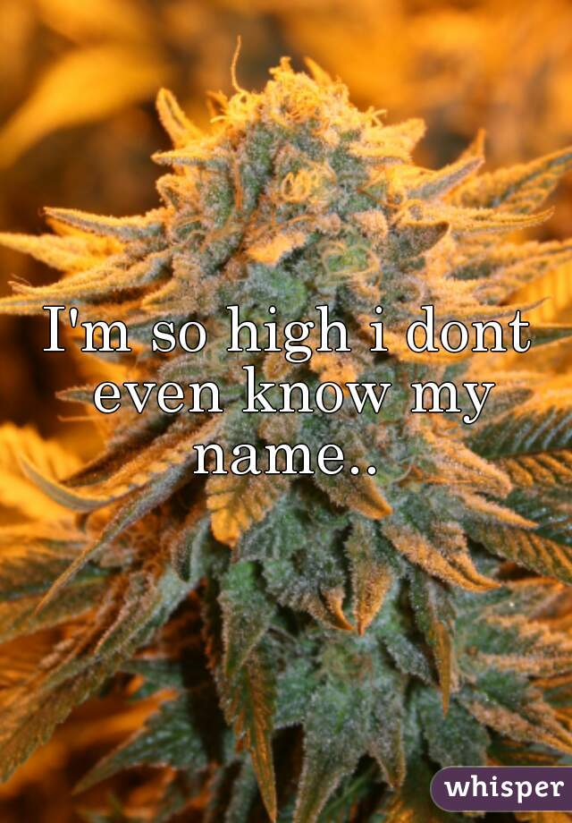 I'm so high i dont even know my name..