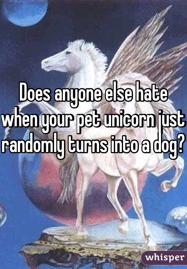 Does anyone else hate when your pet unicorn just randomly turns into a dog?