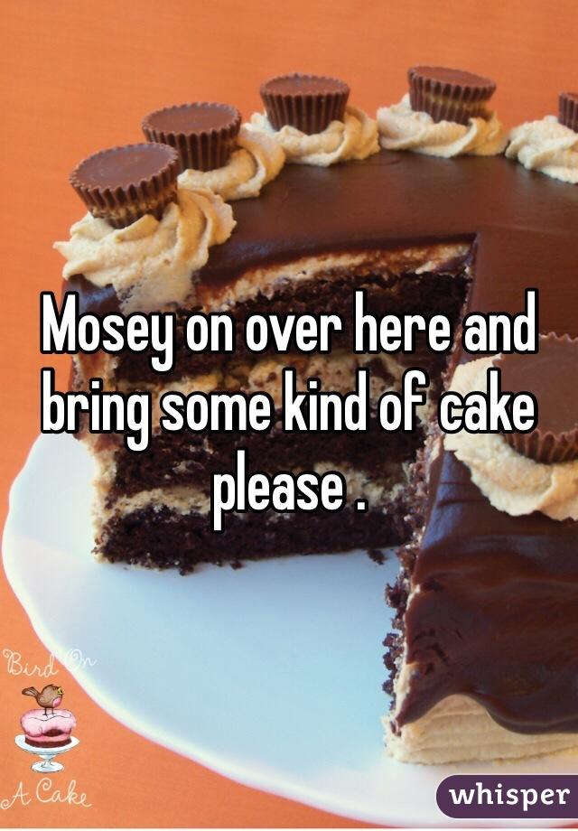 Mosey on over here and bring some kind of cake please .