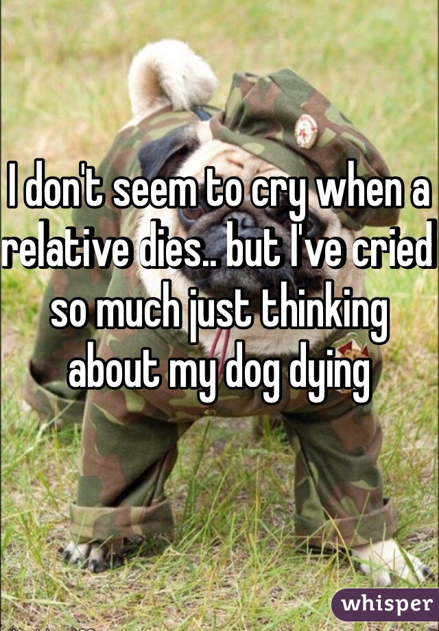 I don't seem to cry when a relative dies.. but I've cried so much just thinking about my dog dying