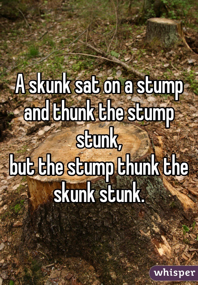 A skunk sat on a stump and thunk the stump stunk, but the stump thunk the skunk stunk.