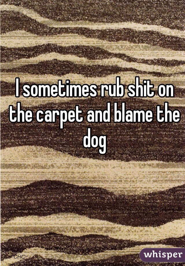 I sometimes rub shit on the carpet and blame the dog
