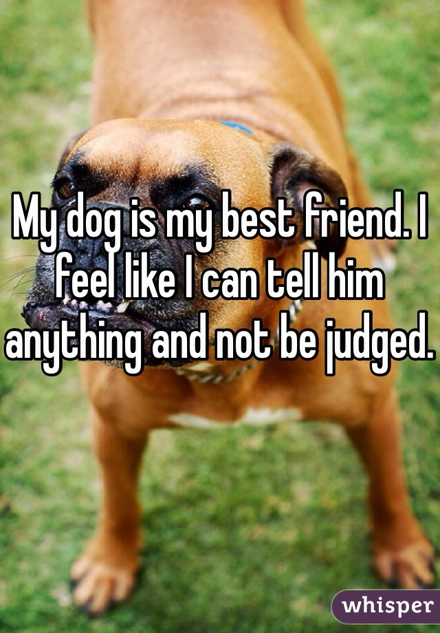 My dog is my best friend. I feel like I can tell him anything and not be judged.