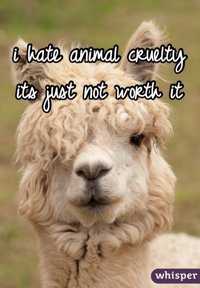 i hate animal cruelty its just not worth it