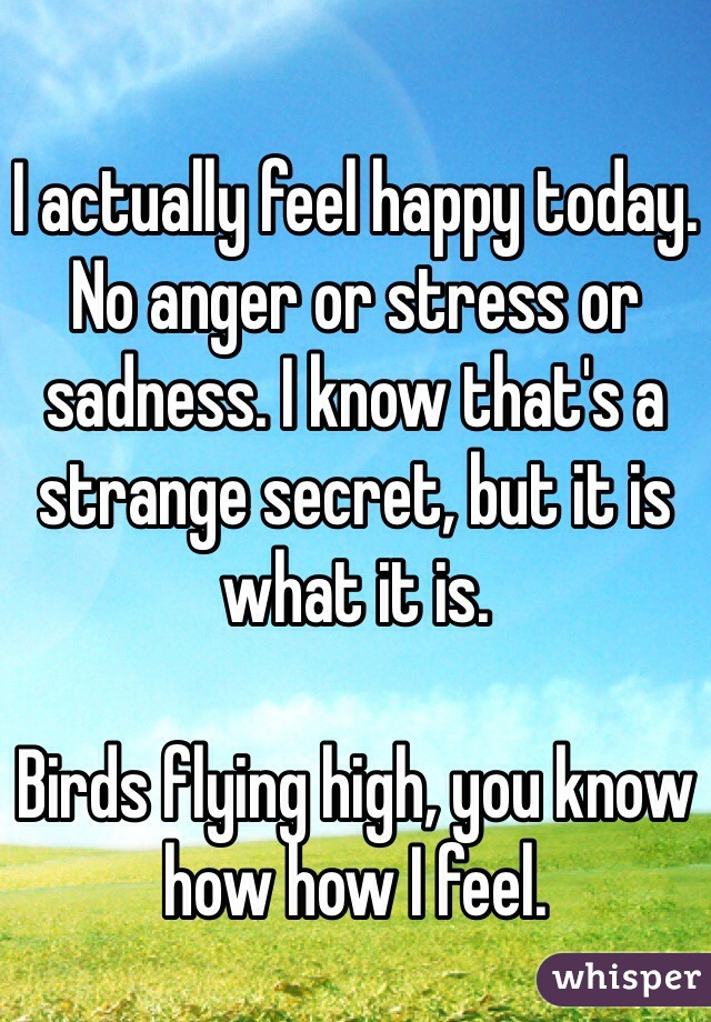 I actually feel happy today. No anger or stress or sadness. I know that's a strange secret, but it is what it is.  Birds flying high, you know how how I feel.