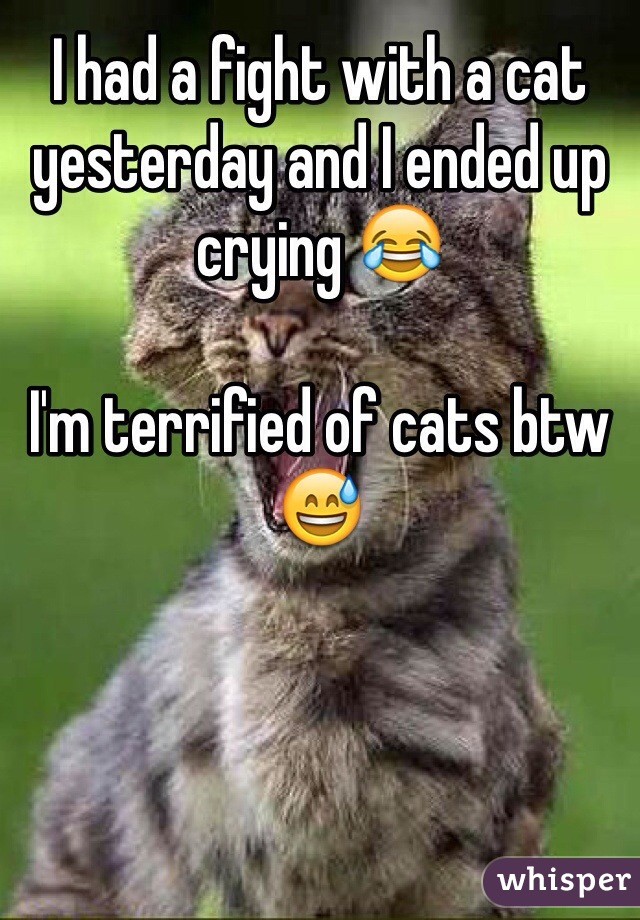 I had a fight with a cat yesterday and I ended up crying 😂  I'm terrified of cats btw 😅