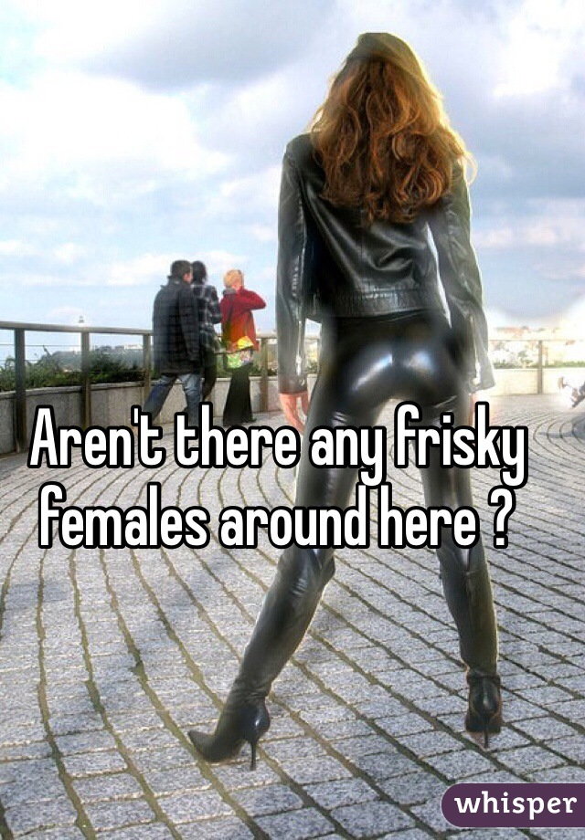 Aren't there any frisky females around here ?