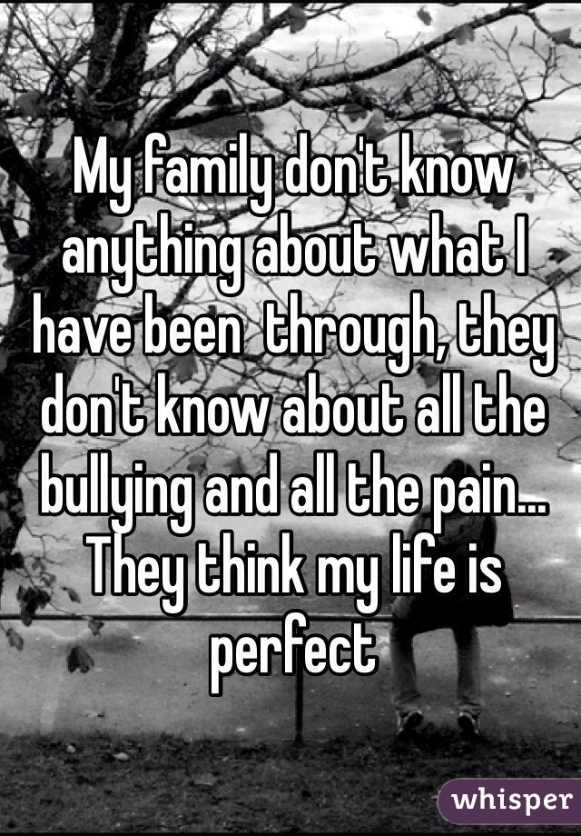 My family don't know anything about what I have been  through, they don't know about all the bullying and all the pain... They think my life is perfect