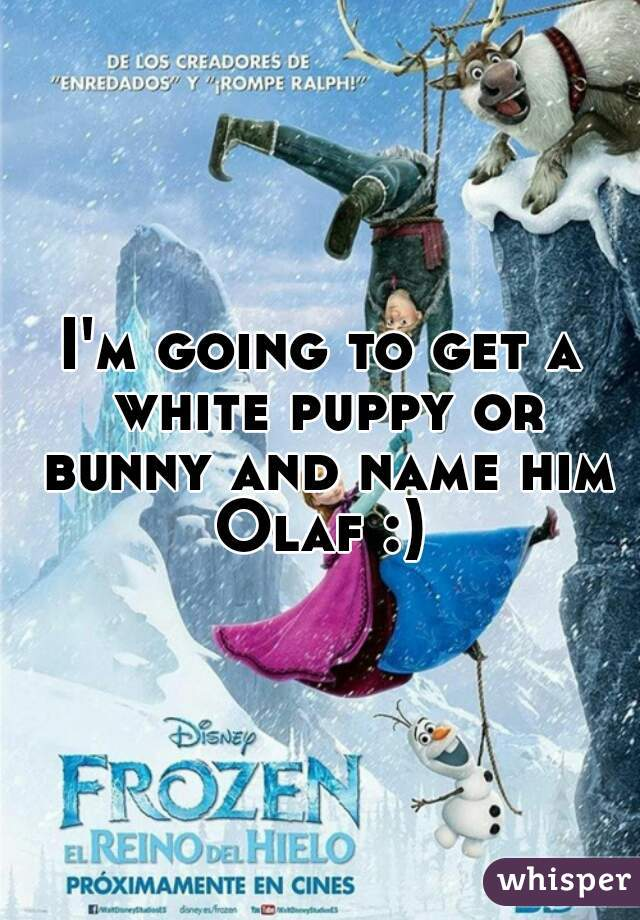 I'm going to get a white puppy or bunny and name him Olaf :)