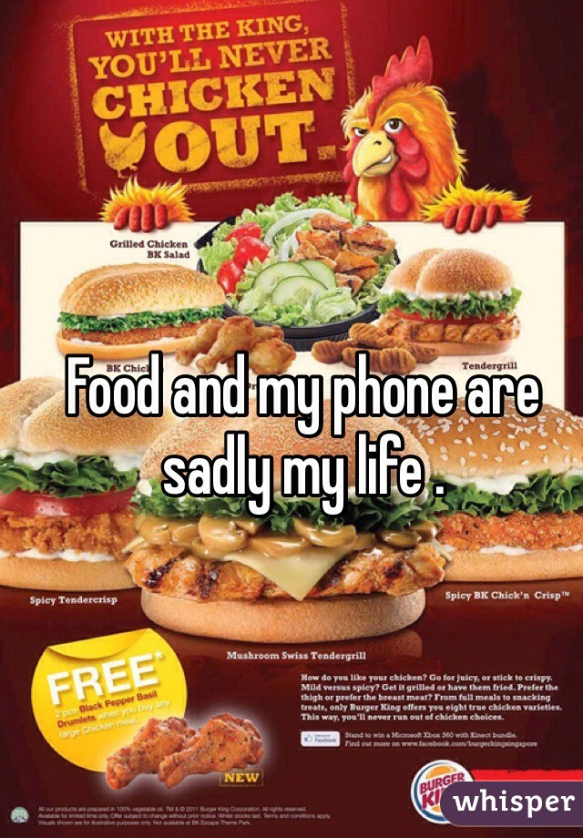 Food and my phone are sadly my life .