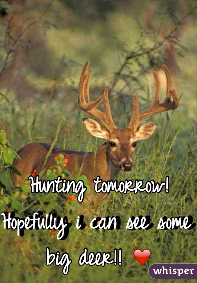 Hunting tomorrow! Hopefully i can see some big deer!! ❤️