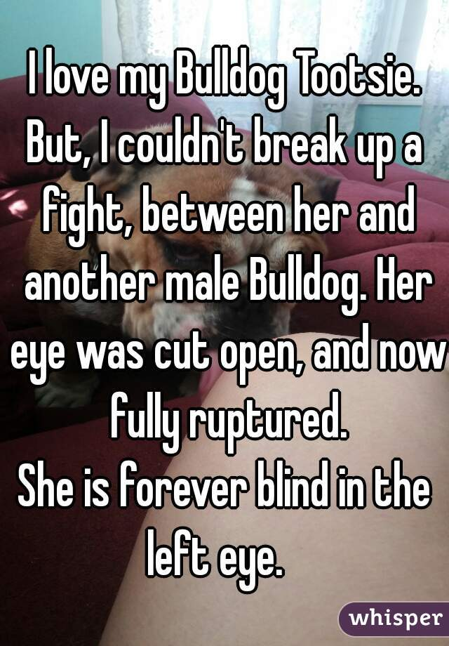 I love my Bulldog Tootsie. But, I couldn't break up a fight, between her and another male Bulldog. Her eye was cut open, and now fully ruptured. She is forever blind in the left eye.