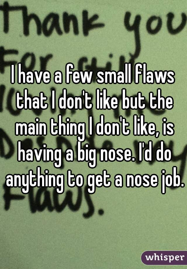 I have a few small flaws that I don't like but the main thing I don't like, is having a big nose. I'd do anything to get a nose job.
