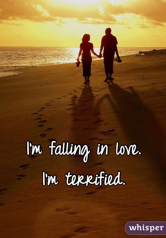 I'm falling in love. I'm terrified.