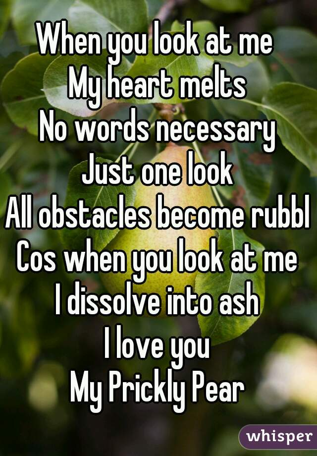 When you look at me  My heart melts No words necessary Just one look All obstacles become rubble Cos when you look at me I dissolve into ash I love you My Prickly Pear