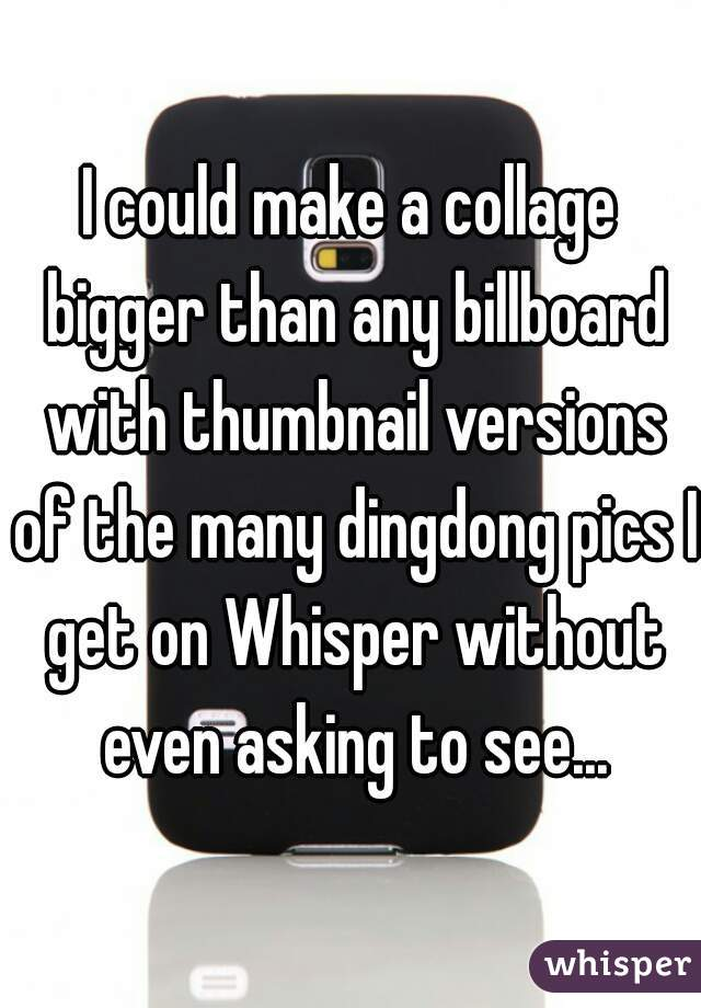 I could make a collage bigger than any billboard with thumbnail versions of the many dingdong pics I get on Whisper without even asking to see...