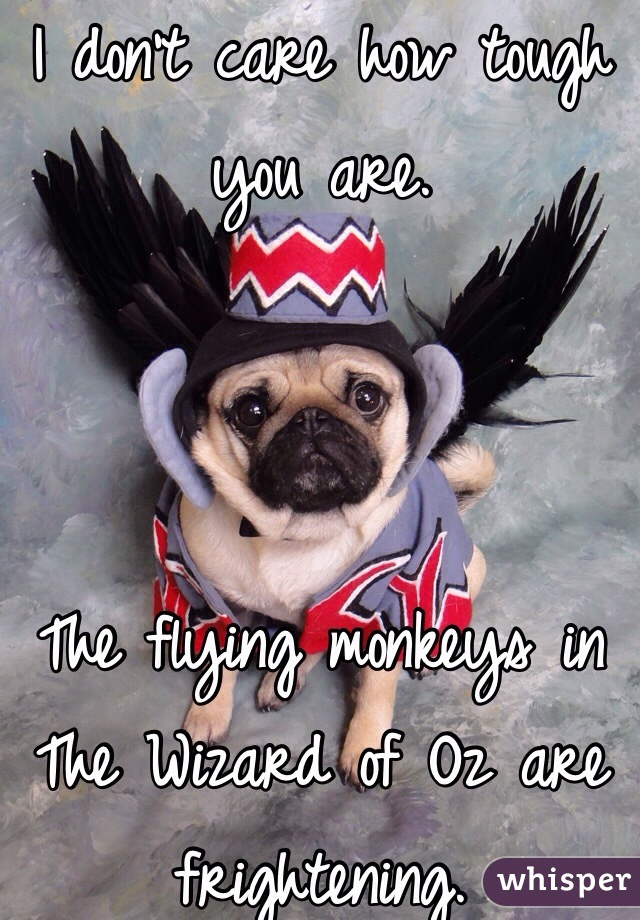 I don't care how tough you are.     The flying monkeys in The Wizard of Oz are frightening.