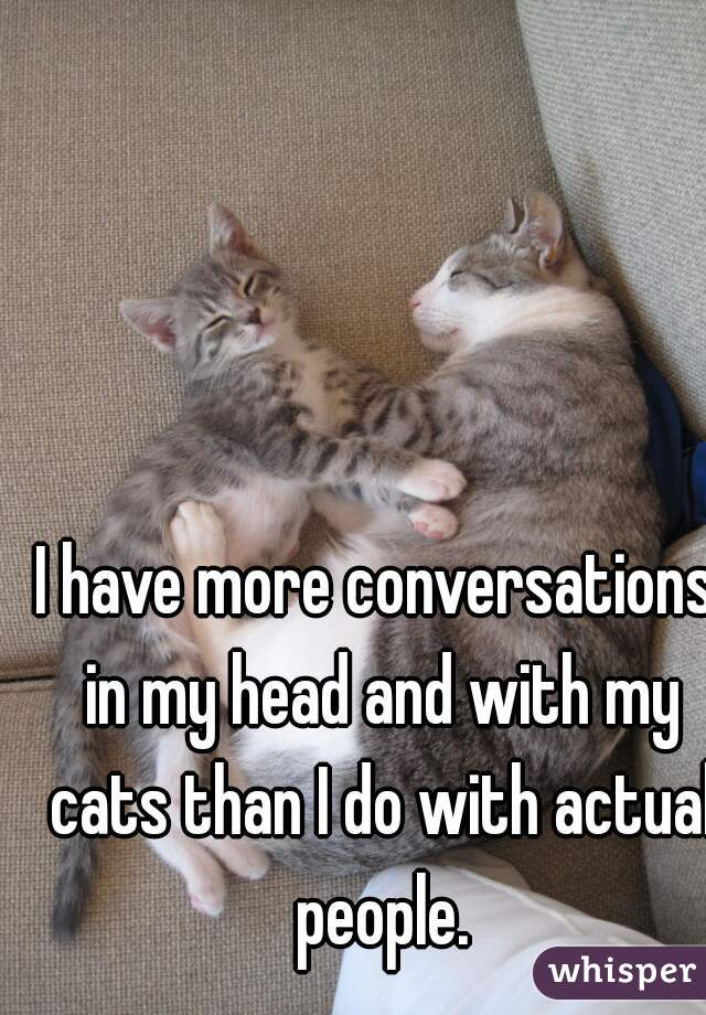 I have more conversations in my head and with my cats than I do with actual people.