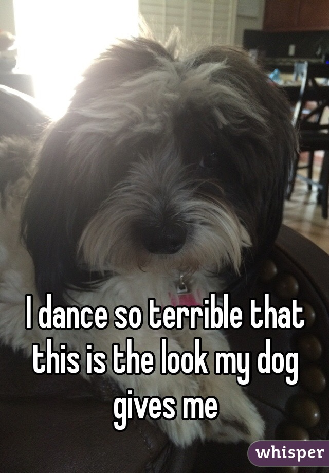 I dance so terrible that this is the look my dog gives me