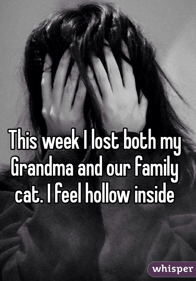 This week I lost both my Grandma and our family cat. I feel hollow inside