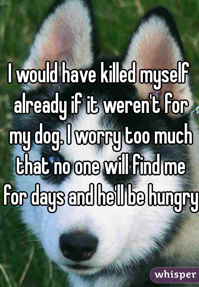 I would have killed myself already if it weren't for my dog. I worry too much that no one will find me for days and he'll be hungry.