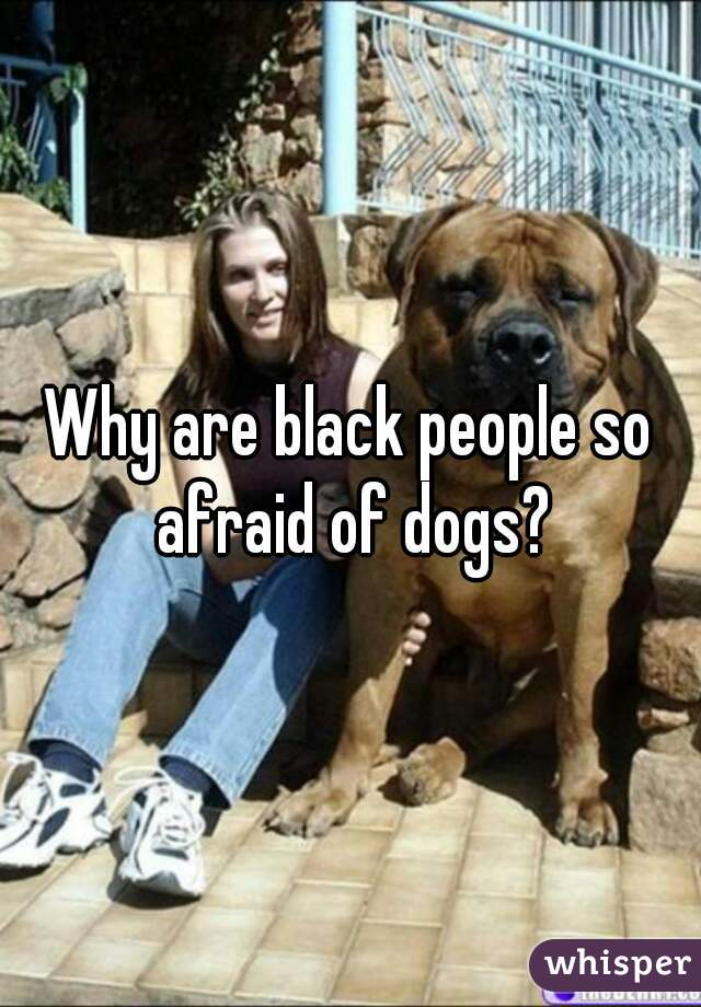 Why are black people so afraid of dogs?