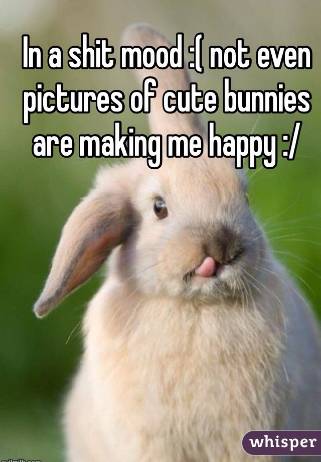 In a shit mood :( not even pictures of cute bunnies are making me happy :/