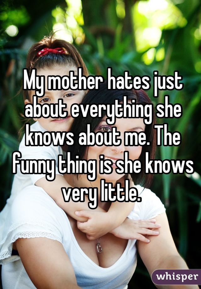 My mother hates just about everything she knows about me. The funny thing is she knows very little.