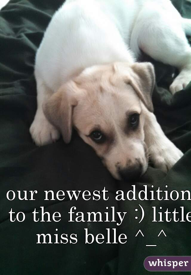 our newest addition to the family :) little miss belle ^_^