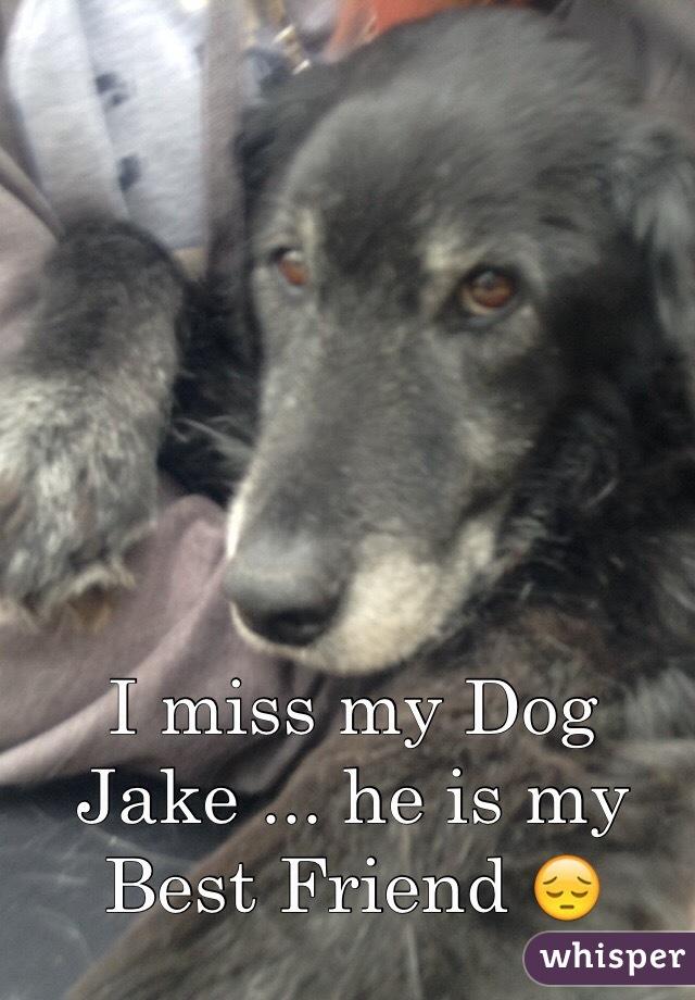 I miss my Dog Jake ... he is my Best Friend 😔
