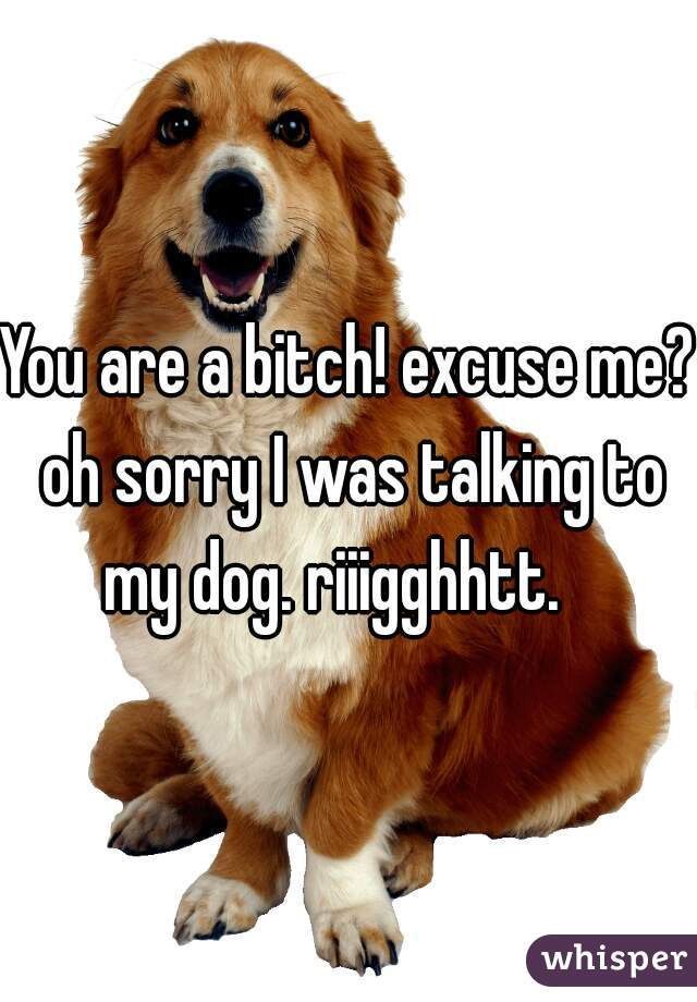 You are a bitch! excuse me? oh sorry I was talking to my dog. riiigghhtt.