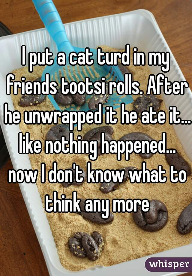 I put a cat turd in my friends tootsi rolls. After he unwrapped it he ate it... like nothing happened... now I don't know what to think any more