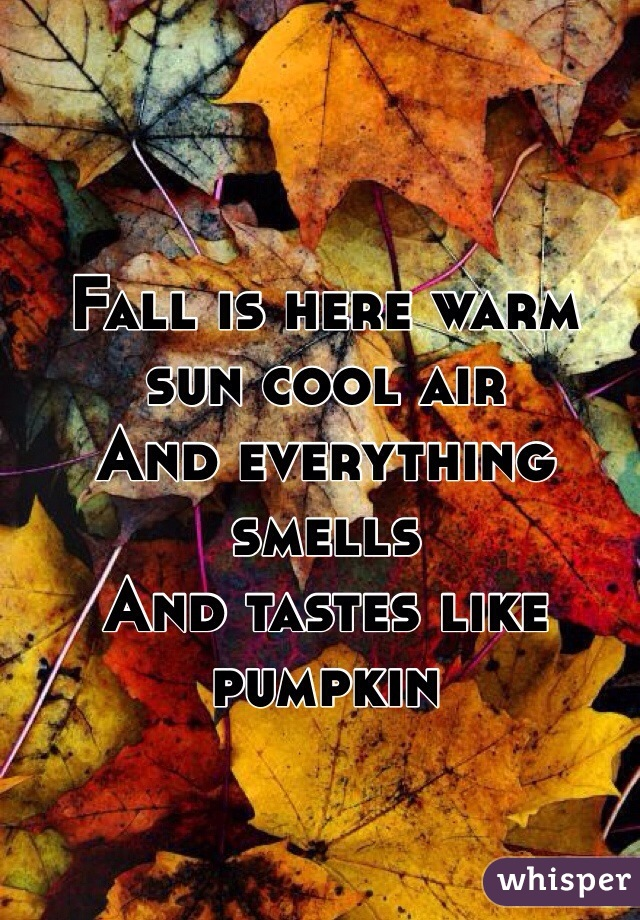 Fall is here warm sun cool air  And everything smells  And tastes like pumpkin