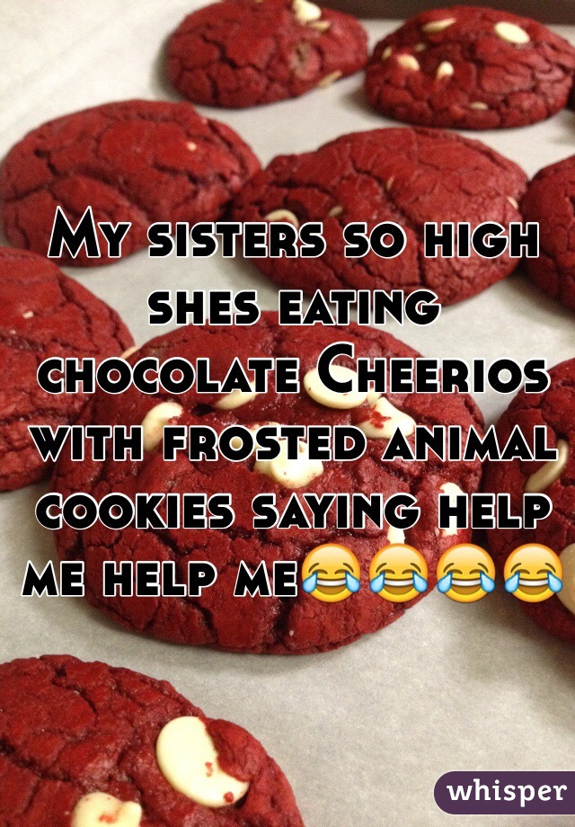My sisters so high shes eating chocolate Cheerios with frosted animal cookies saying help me help me😂😂😂😂