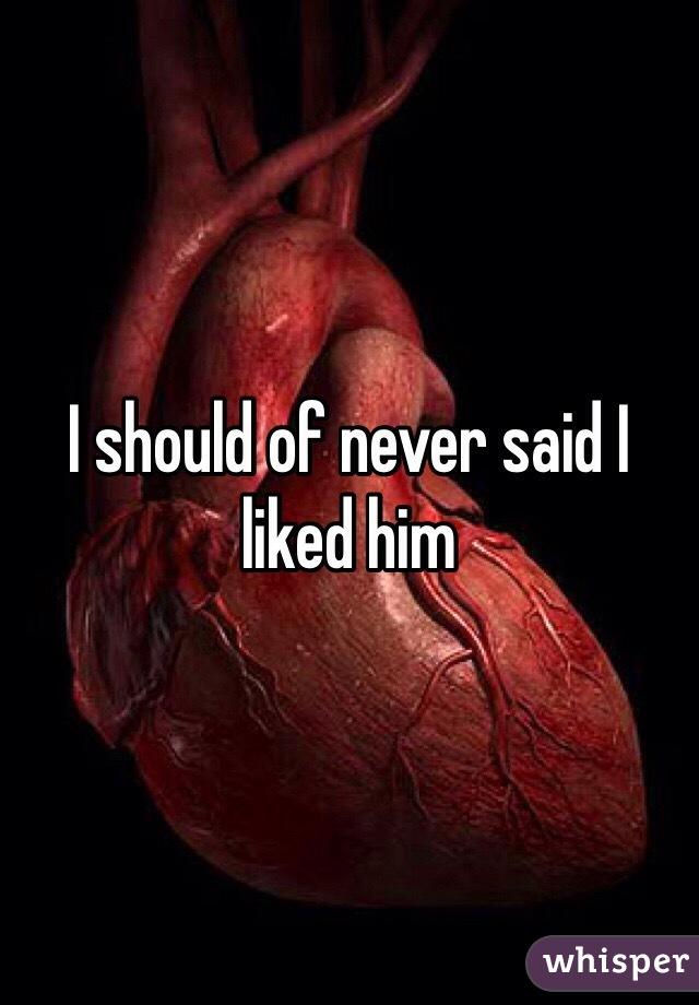 I should of never said I liked him