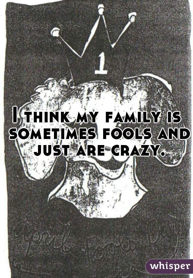 I think my family is sometimes fools and just are crazy.
