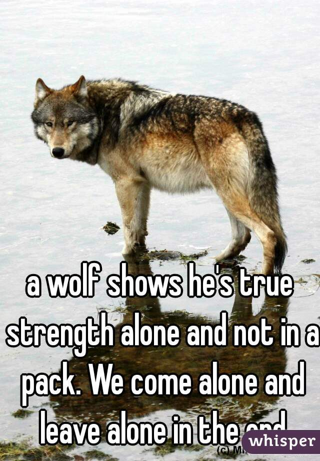 a wolf shows he's true strength alone and not in a pack. We come alone and leave alone in the end