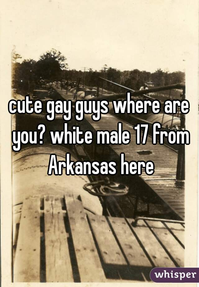 cute gay guys where are you? white male 17 from Arkansas here
