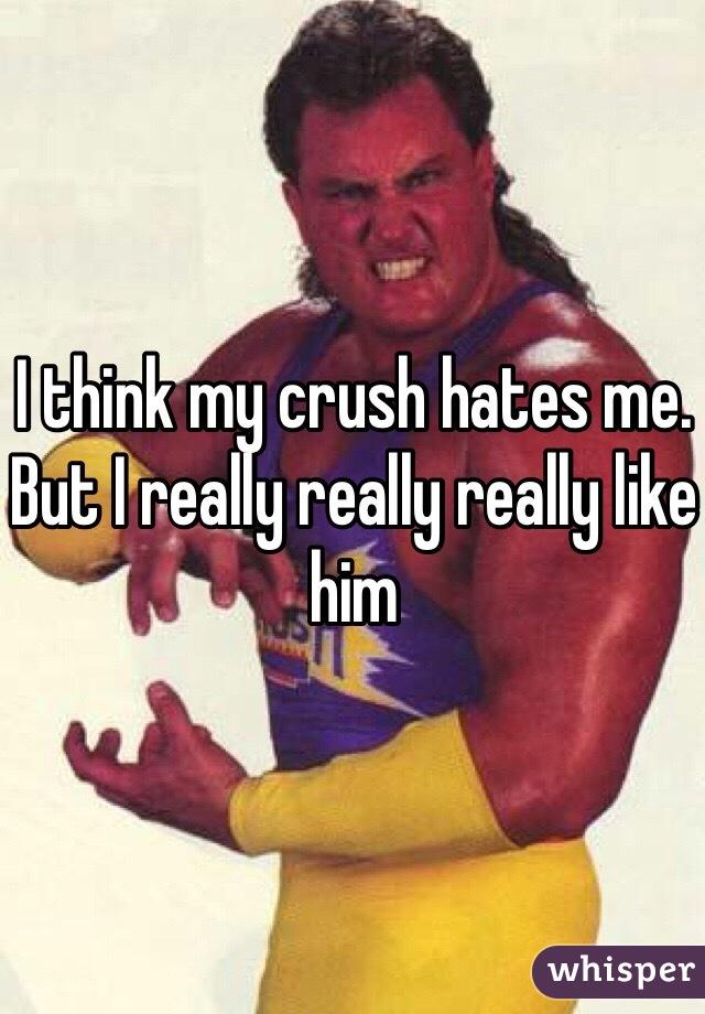 I think my crush hates me. But I really really really like him