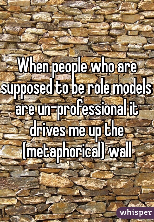 When people who are supposed to be role models are un-professional it drives me up the (metaphorical) wall