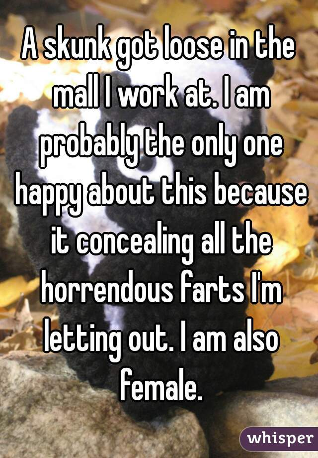 A skunk got loose in the mall I work at. I am probably the only one happy about this because it concealing all the horrendous farts I'm letting out. I am also female.